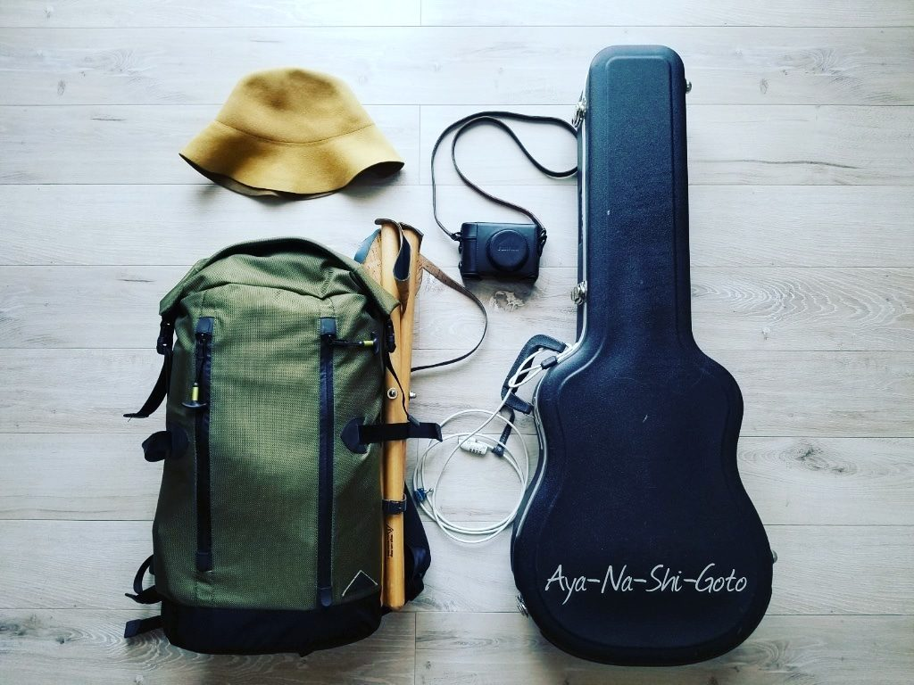 Travel Belongings